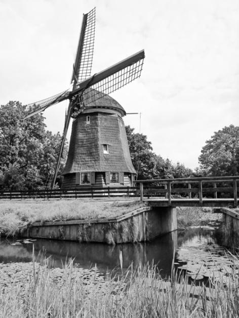 Canals of Edam, Netherlands
