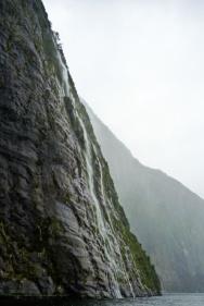Milford South, Fiordland National Park, South Island