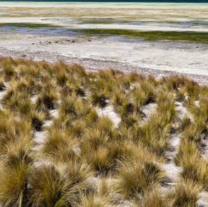 Bay of Shoals, Kangaroo Island