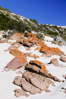 Stokes Bay, Kangaroo Island_02