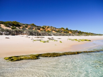 Cattle Well Beach, Francois Peron National Park, Shark Bay