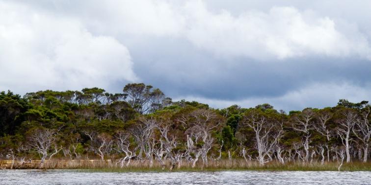 Broke Inlet, D'Entrecaseaux National Park