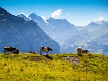 Jangfraujoch, Switzerland