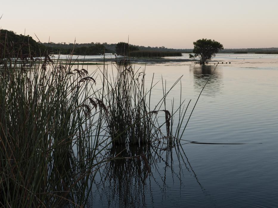 Nature Park Perth