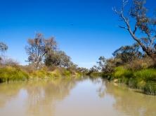 Diamantina River, Birdsville, Queensland