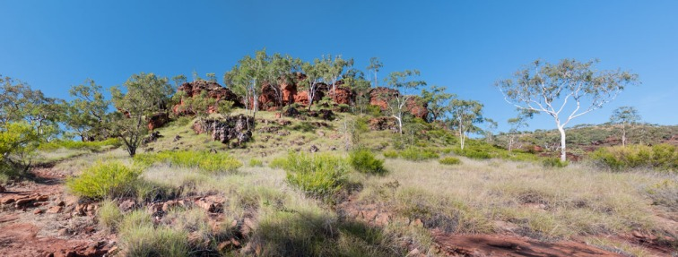 Escarpment Walk, Gregory National Park, Northern Territory