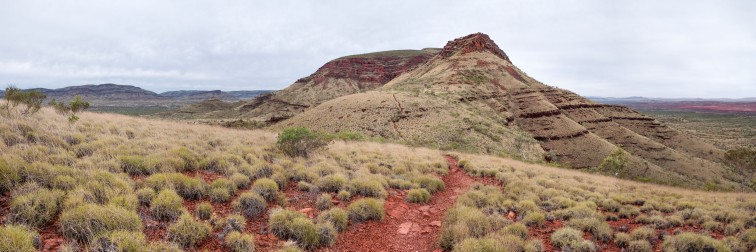 Mt Bruce Karijini Mt Bruce, Karijini National Park, Western Australia
