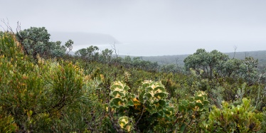 Fitzgerald River National Park