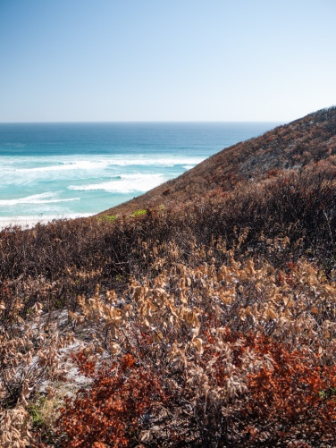 Conspicuous Cliff, Walpole-Nornalup National Park