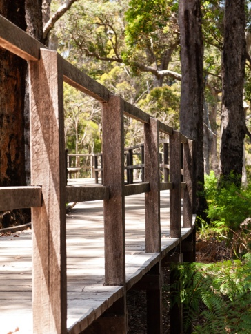 John Rate Lookout, Walpole-Nornalup National Park