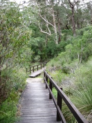 Walking trail to the summit of Mount Chudalup, D'Entrecasteaux National Park