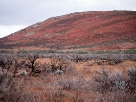 Gawler Ranges National Park, South Australia