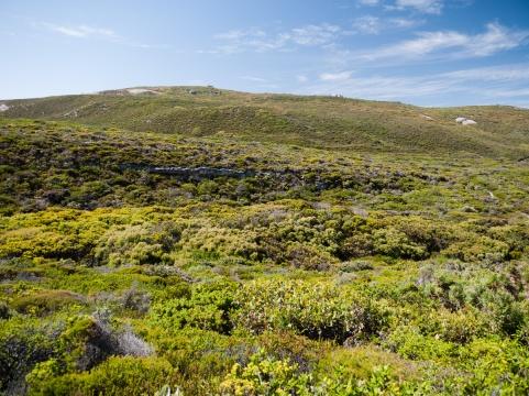Peak Head, Torndirrup National Park