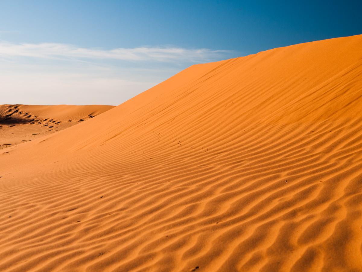 Simpson Desert National Park Enviro Guide Wa