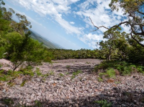 Rocky Scree, Mount Toolbrunup, Stirling Range National Park