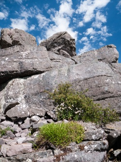 Rocky Outcrops, Mount Toolbrunup, Stirling Range National Park