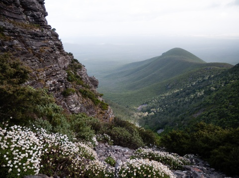 Wildflower Valleys of Mount Toolbrunup, Stirling Range National Park