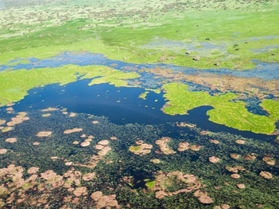 Floodplains, Kakadu National Park, Northern Territory