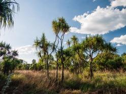 Ubirr, Kakadu National Park, Northern Territory