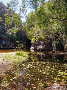 Butterfly Spring, Limmen National Park, Northern Territory