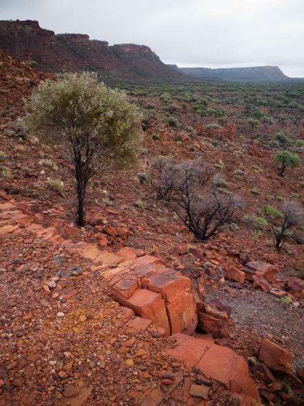 Sunrise Lookout, Kennedy Ranges National Park, Western Australia
