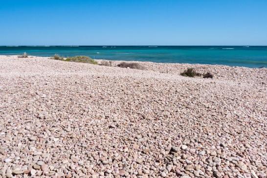 South Mandu, Ningaloo Marine Park, Western Australia