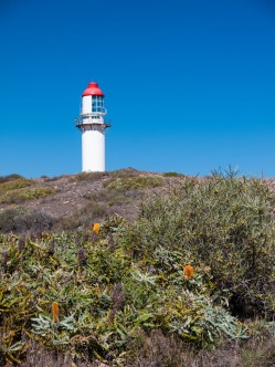 Lighthouse, Quobba Station, Western Australia