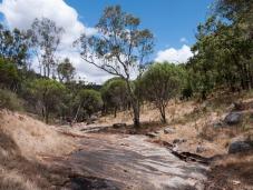 Dry creek bed of the Avon River, Avon Valley National Park, Western Australia