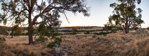 Sweeping views of farmland near Wandering at sunset, Western Australia