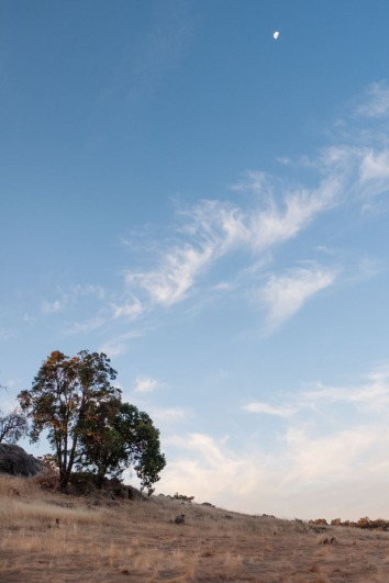 Moonrise over farmland near Wandering, Western Australia