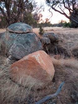 Granite outcrops dotted among farmland near Wandering, Western Australia