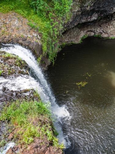Cascade of the waterfall, Killen Falls Nature Reserve