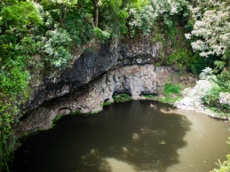 Watering hole from above, Killen Falls Nature Reserve