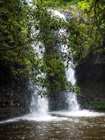 Spray of the falls, Killen Falls Nature Reserve