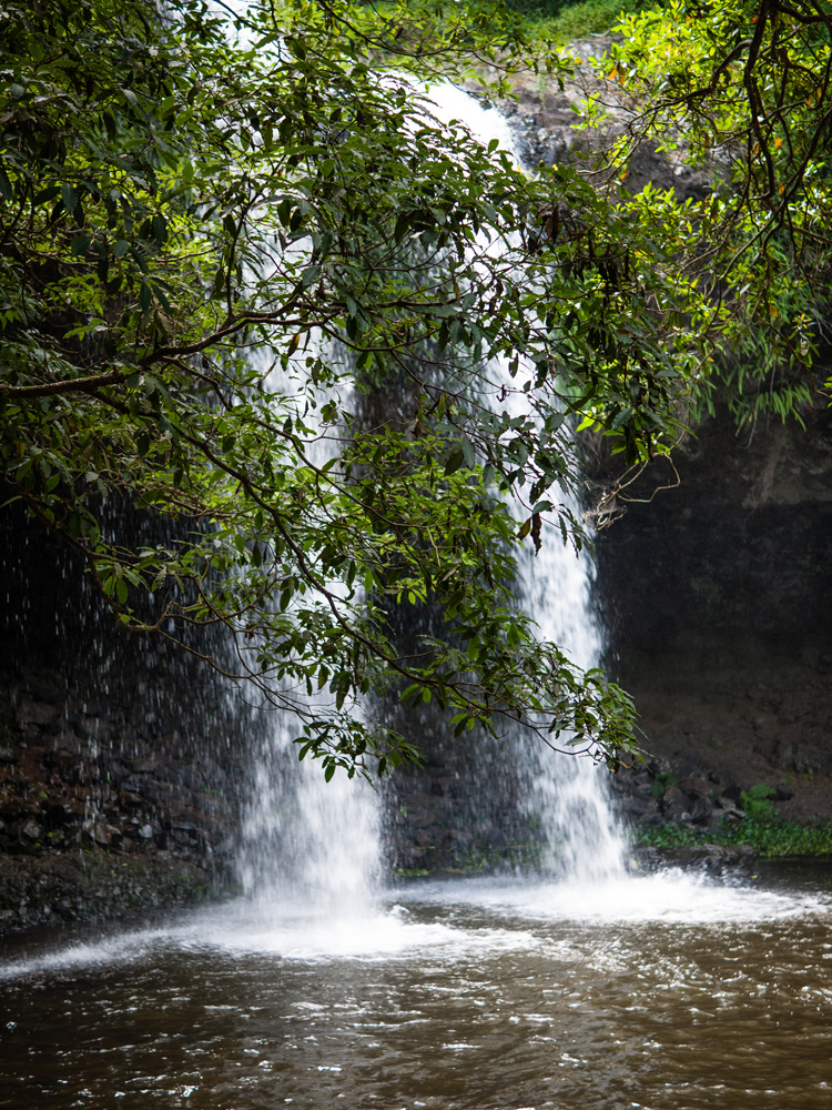 Spray of the falls, Killen Falls Nature Reserve