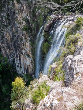 View of Minyon Falls from the Lookout, Nightcap National Park
