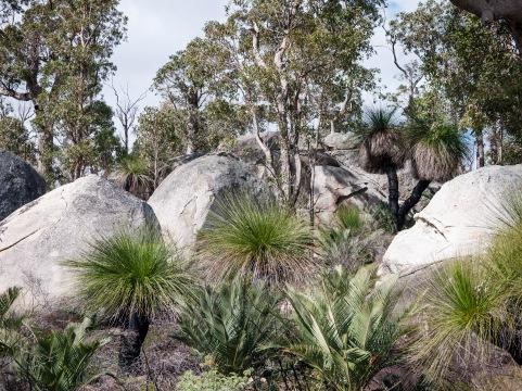 Mount Cooke, Monadnocks Conservation Park